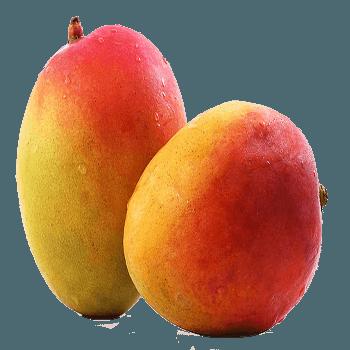 mango-350×350