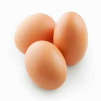 yumurta-300×239-350×350