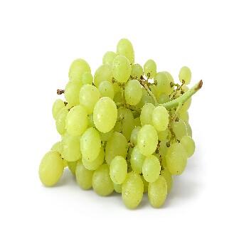 grapes-green-350×350