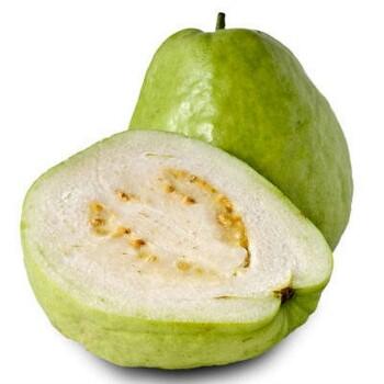 guava-white-350×350